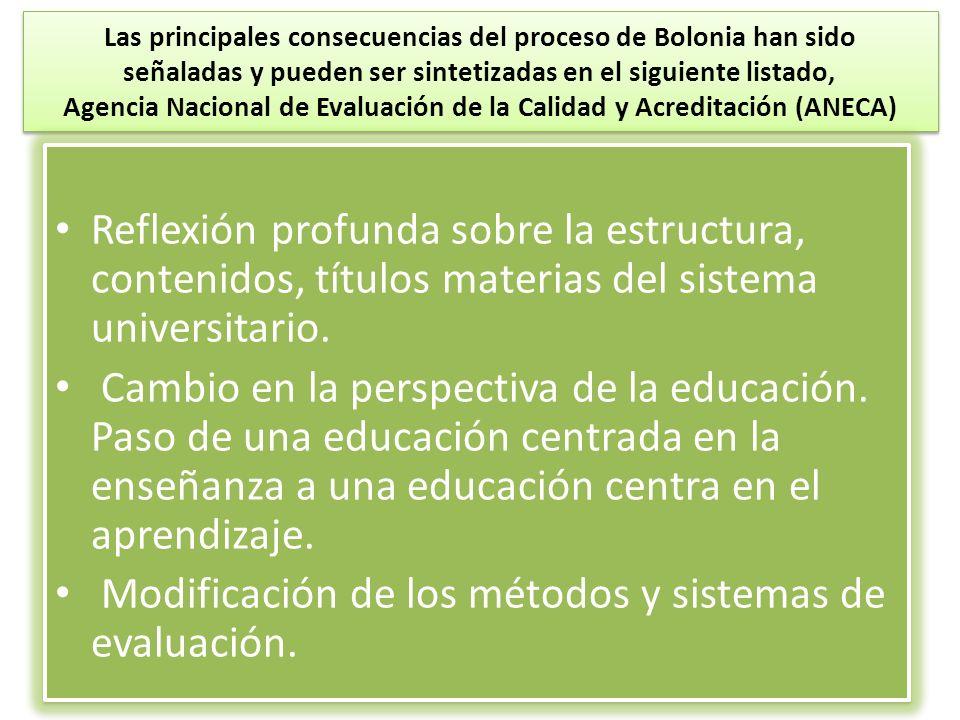 Las principales consecuencias del proceso de Bolonia han sido señaladas y pueden ser sintetizadas en el siguiente listado, Agencia Nacional de Evaluac
