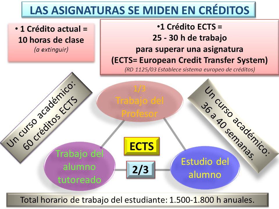 Total horario de trabajo del estudiante: 1.500-1.800 h anuales. Un curso académico: 60 créditos ECTS Un curso académico: 60 créditos ECTS Un curso aca