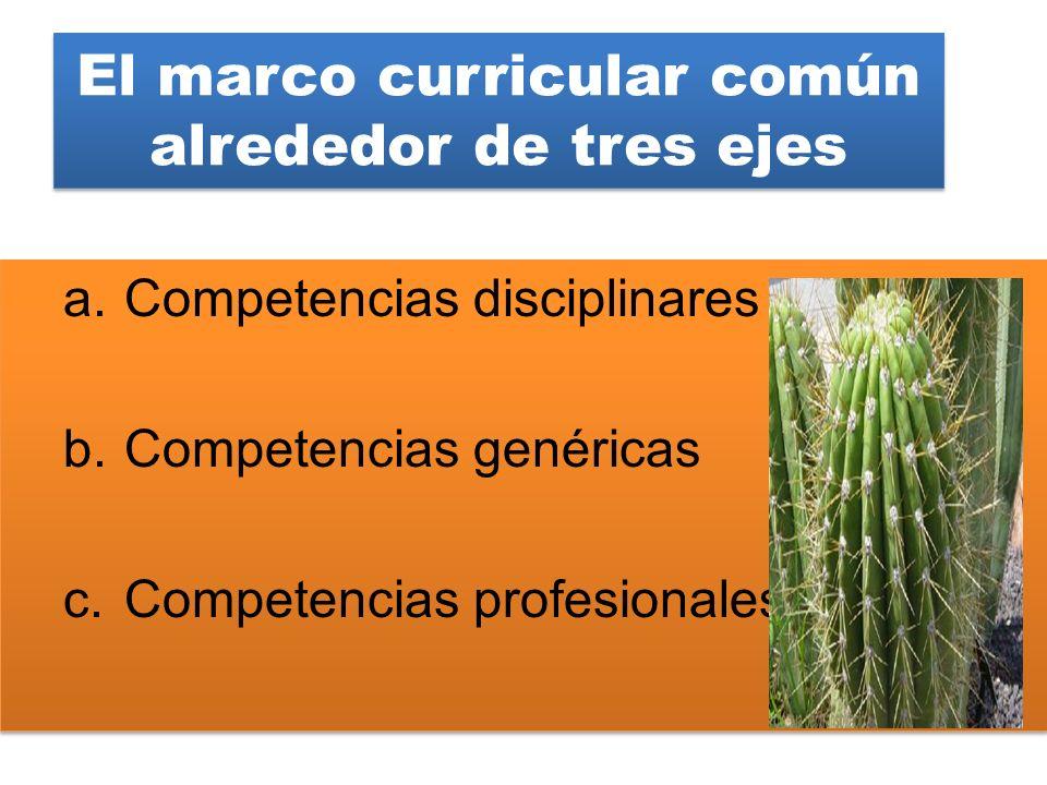 El marco curricular común alrededor de tres ejes a.Competencias disciplinares b.Competencias genéricas c.Competencias profesionales a.Competencias dis