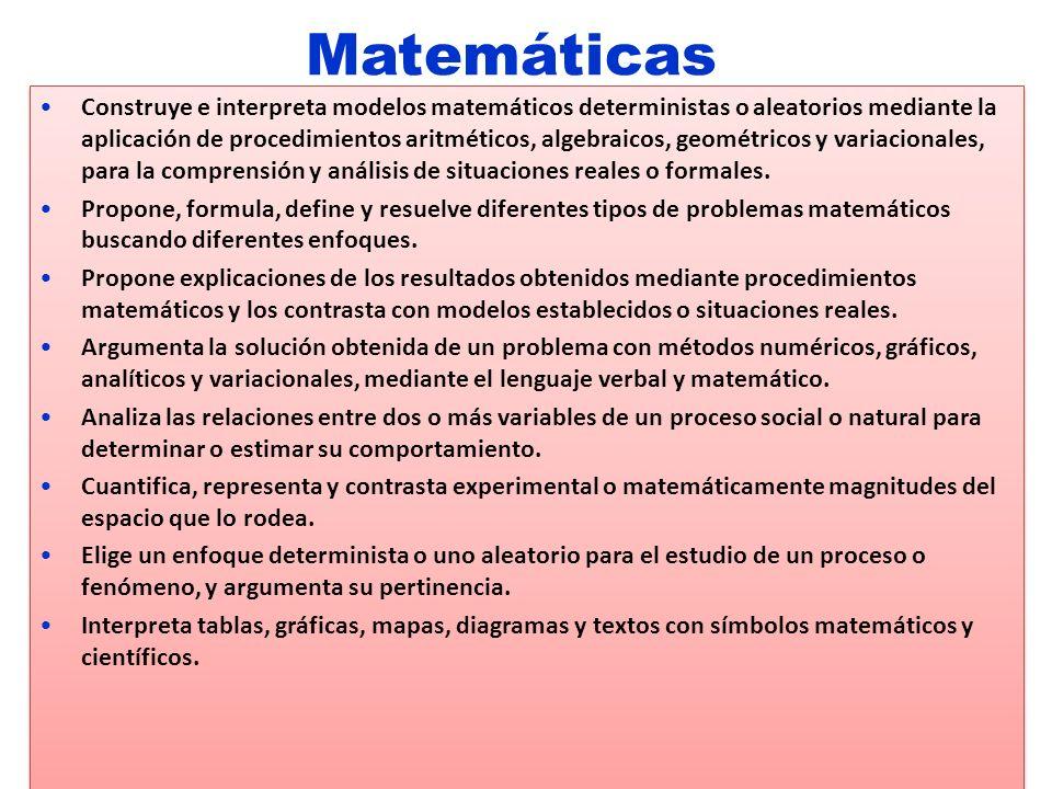 Construye e interpreta modelos matemáticos deterministas o aleatorios mediante la aplicación de procedimientos aritméticos, algebraicos, geométricos y