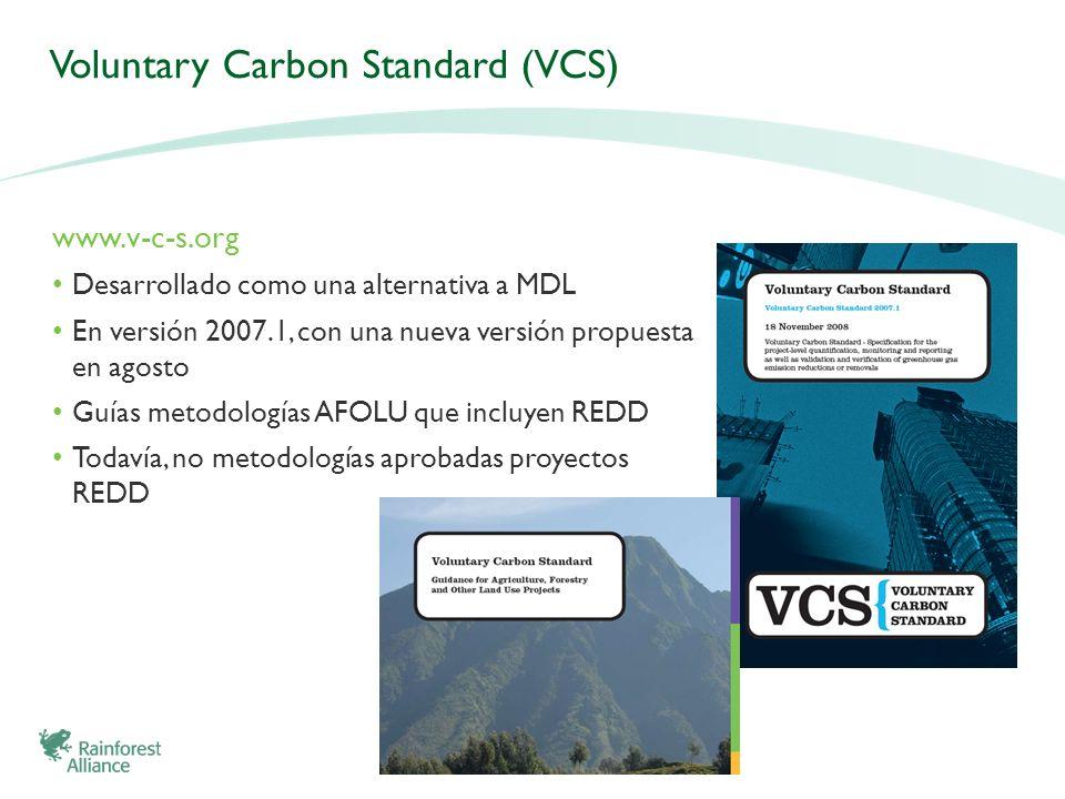 Voluntary Carbon Standard (VCS) www.v-c-s.org Desarrollado como una alternativa a MDL En versión 2007.1, con una nueva versión propuesta en agosto Guí