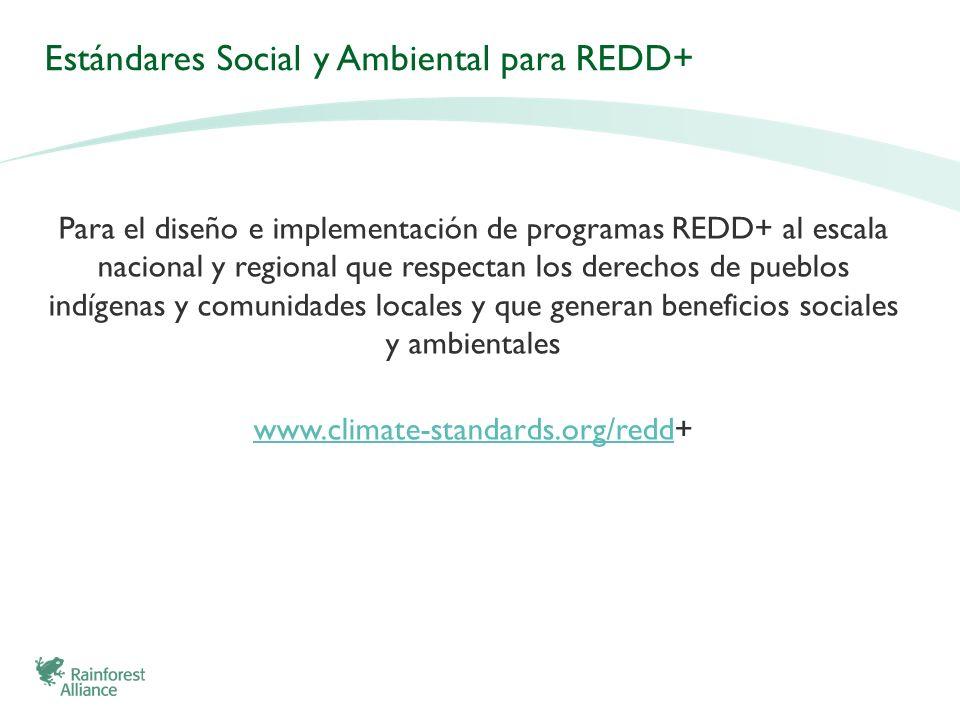 Estándares Social y Ambiental para REDD+ Para el diseño e implementación de programas REDD+ al escala nacional y regional que respectan los derechos d