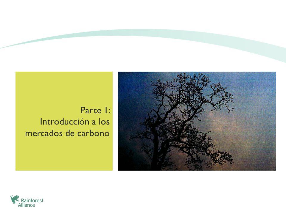 Parte 1: Introducción a los mercados de carbono