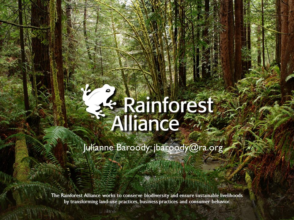 The Rainforest Alliance works to conserve biodiversity and ensure sustainable livelihoods by transforming land-use practices, business practices and c