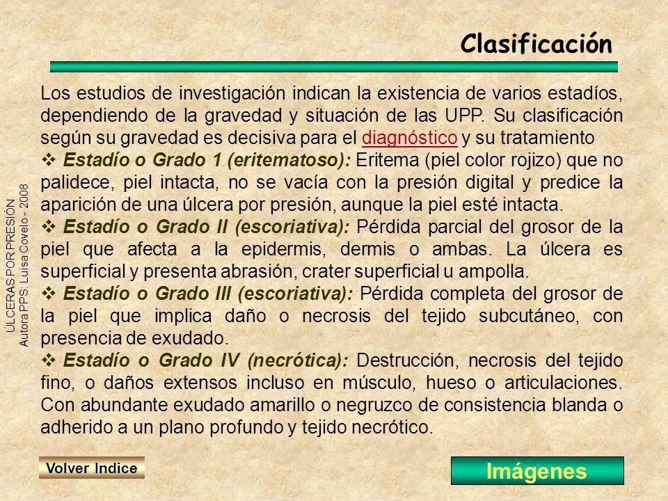 ÚLCERAS POR PRESIÓN Autora PPS: Luisa Covelo - 2008 Los estudios de investigación indican la existencia de varios estadíos, dependiendo de la gravedad