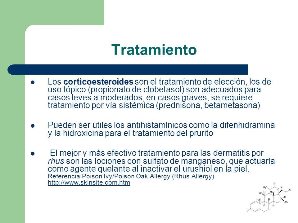 Tratamiento corticoesteroides Los corticoesteroides son el tratamiento de elección, los de uso tópico (propionato de clobetasol) son adecuados para casos leves a moderados, en casos graves, se requiere tratamiento por vía sistémica (prednisona, betametasona) Pueden ser útiles los antihistamínicos como la difenhidramina y la hidroxicina para el tratamiento del prurito El mejor y más efectivo tratamiento para las dermatitis por rhus son las lociones con sulfato de manganeso, que actuaría como agente quelante al inactivar el urushiol en la piel.