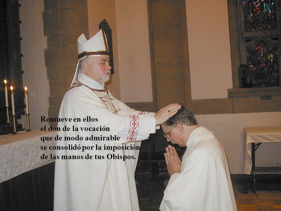 los sacerdotes a cuyas misas he asistido y me han dado Tu Cuerpo y Sangre en la Comunión;