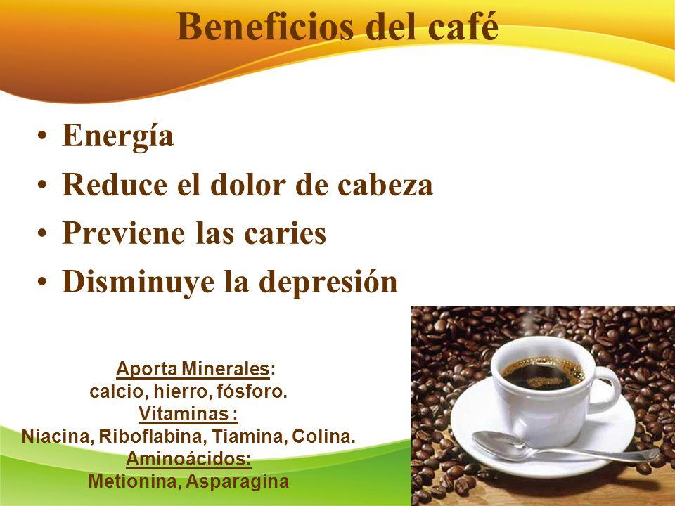 Beneficios del café Energía Reduce el dolor de cabeza Previene las caries Disminuye la depresión Aporta Minerales: calcio, hierro, fósforo. Vitaminas