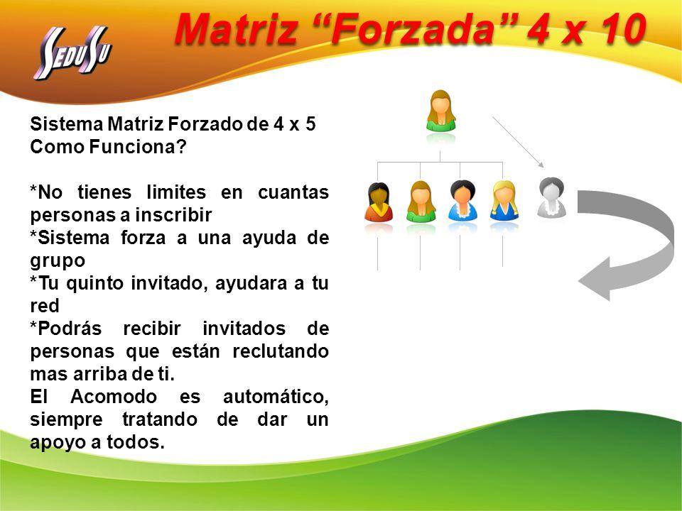 Matriz Forzada 4 x 10 Sistema Matriz Forzado de 4 x 5 Como Funciona? *No tienes limites en cuantas personas a inscribir *Sistema forza a una ayuda de