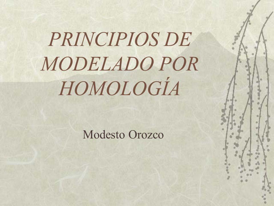 PRINCIPIOS DE MODELADO POR HOMOLOGÍA Modesto Orozco