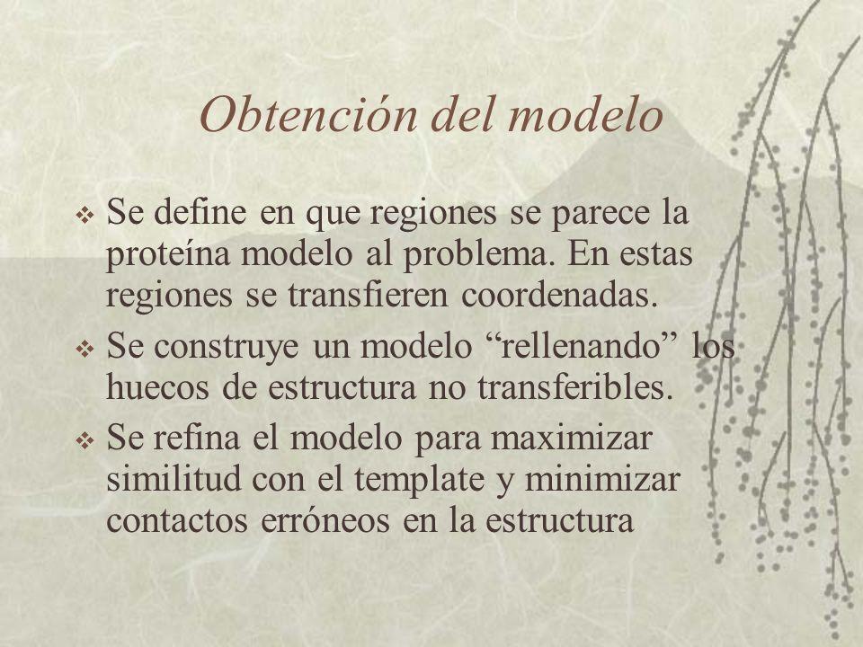 Obtención del modelo Se define en que regiones se parece la proteína modelo al problema.