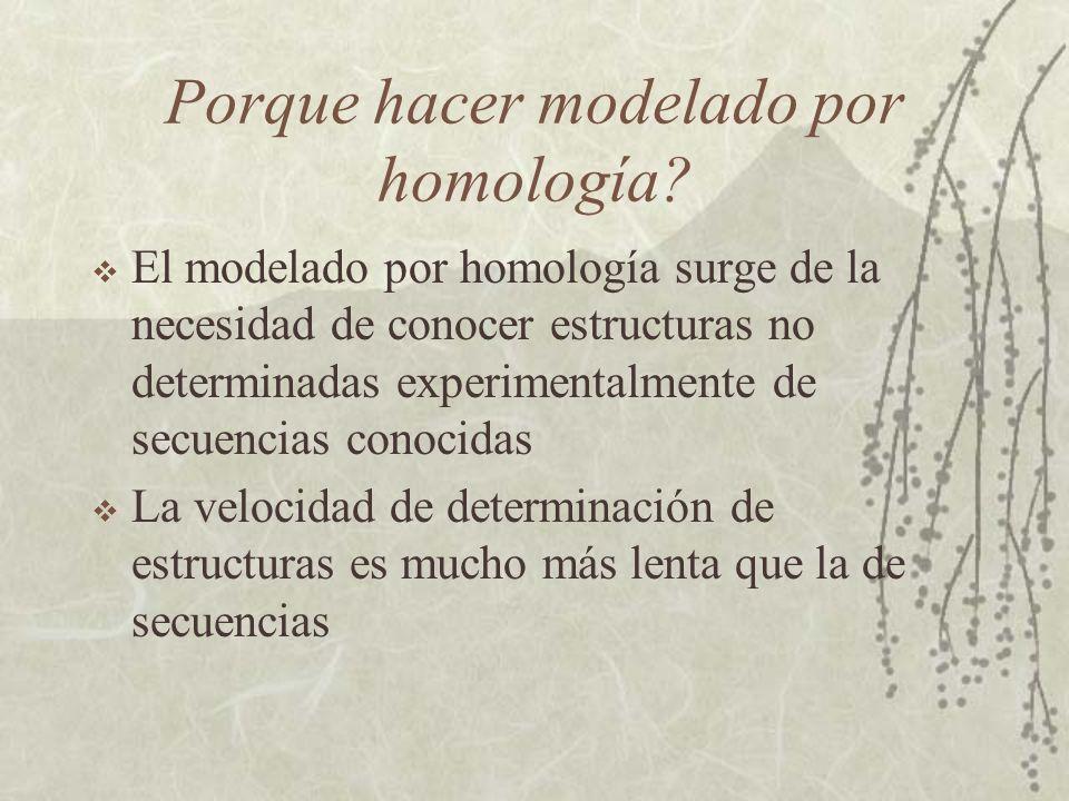 Obtención del modelo Una vez se sabe a que y donde se parece una proteína a otra de estructura conocida se debe construir el modelo Este es el objetivo de los programas de modelado por homología.