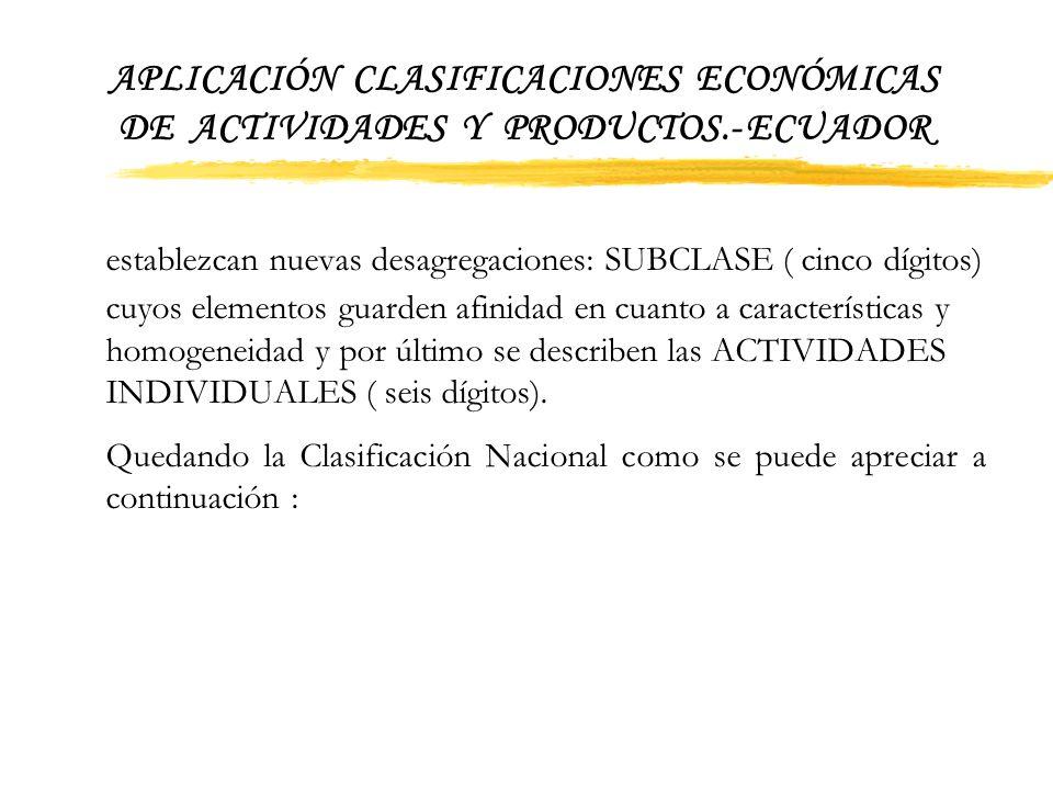 APLICACIÓN CLASIFICACIONES ECONÓMICAS DE ACTIVIDADES Y PRODUCTOS.- ECUADOR 4 Estructura de las Clasificaciones 4.1Estructura de la Clasificación Ampli