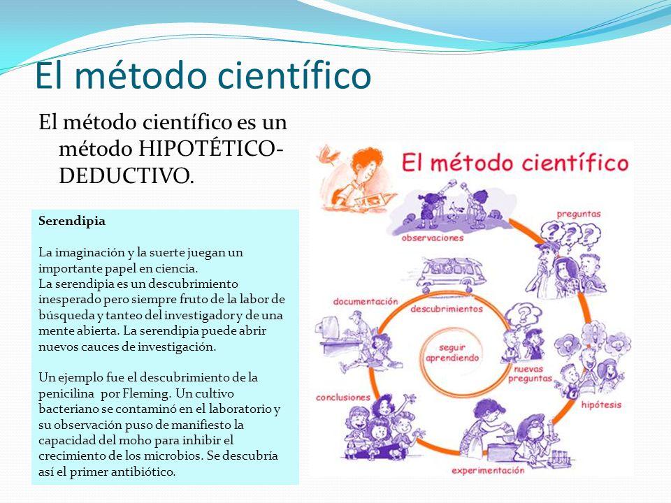 El método científico El método científico es un método HIPOTÉTICO- DEDUCTIVO. Serendipia La imaginación y la suerte juegan un importante papel en cien
