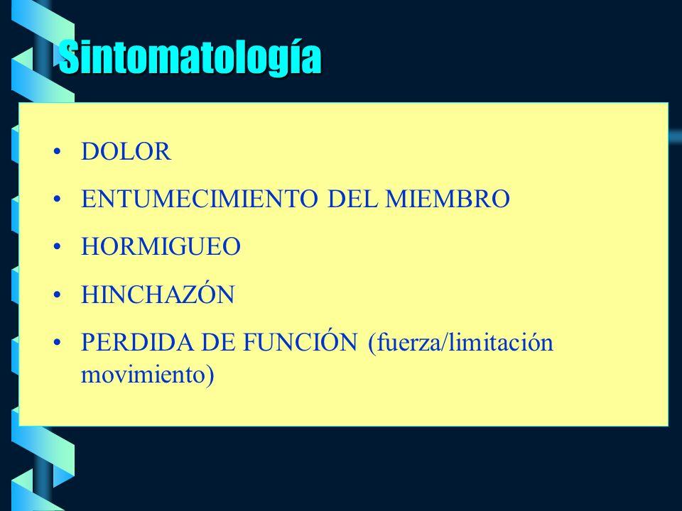 Sintomatología DOLOR ENTUMECIMIENTO DEL MIEMBRO HORMIGUEO HINCHAZÓN PERDIDA DE FUNCIÓN (fuerza/limitación movimiento)