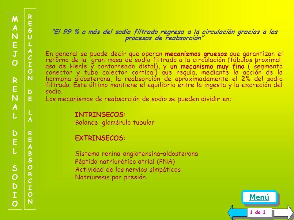 REGULACION DELA FILTRACIONREGULACION DELA FILTRACION Dada las características de la membrana de filtración, el sodio filtra sin ningún tipo de restric