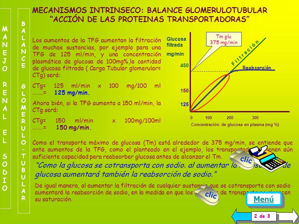 Este mecanismo es de tipo grueso, opera de manera tal que los cambios en la TFG inducen un cambio en la misma dirección para la reabsorción de sodio.