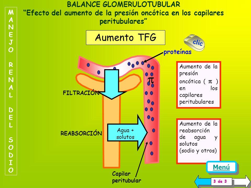 Los aumentos de la TFG aumentan la filtración de muchas sustancias, por ejemplo para una TFG de 125 ml/min, y una concentración plasmática de glucosa