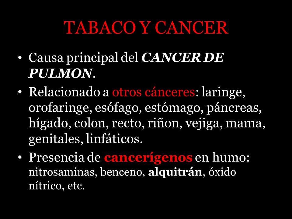 TABACO Y CANCER Causa principal del CANCER DE PULMON. Relacionado a otros cánceres: laringe, orofaringe, esófago, estómago, páncreas, hígado, colon, r