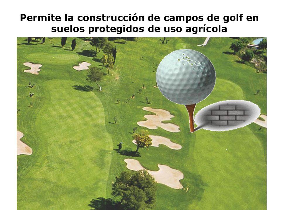 Permite la construcción de campos de golf en suelos protegidos de uso agrícola