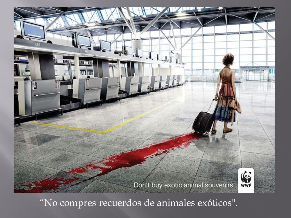 No compres recuerdos de animales exóticos .