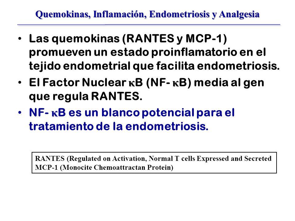 Quemokinas, Inflamación, Endometriosis y Analgesia Las quemokinas (RANTES y MCP-1) promueven un estado proinflamatorio en el tejido endometrial que facilita endometriosis.