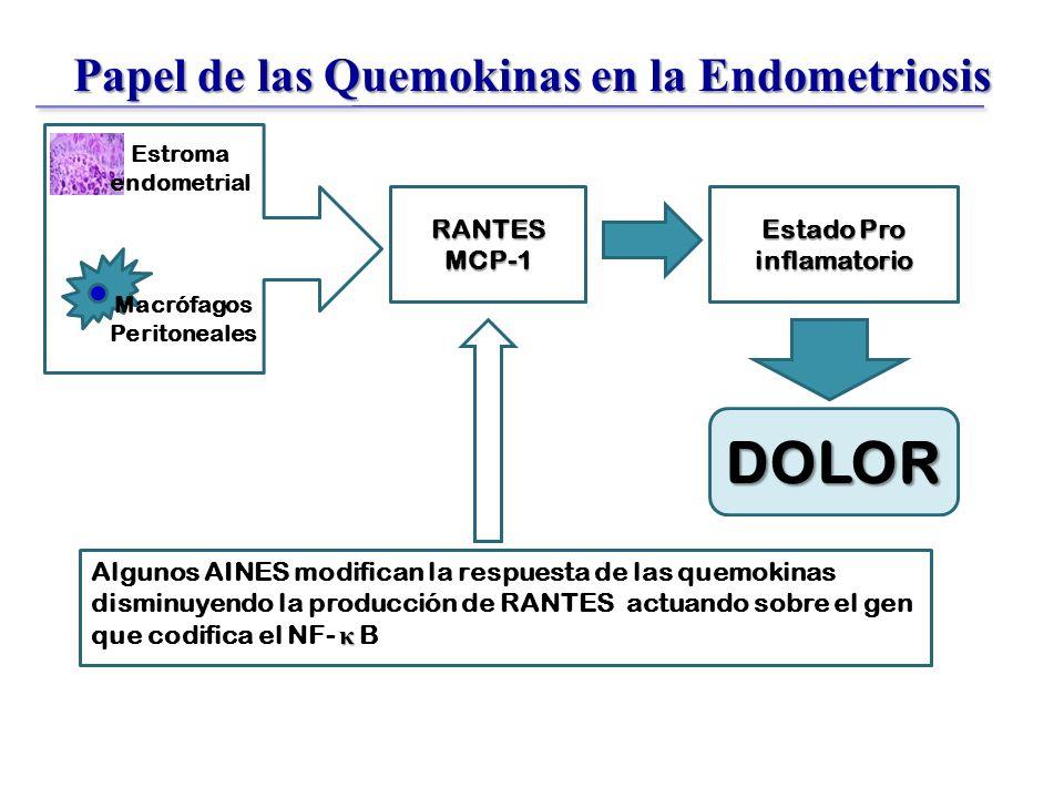 Papel de las Quemokinas en la Endometriosis RANTESMCP-1 Estado Pro inflamatorio κ Algunos AINES modifican la respuesta de las quemokinas disminuyendo la producción de RANTES actuando sobre el gen que codifica el NF- κ B Macrófagos Peritoneales DOLOR Estroma endometrial