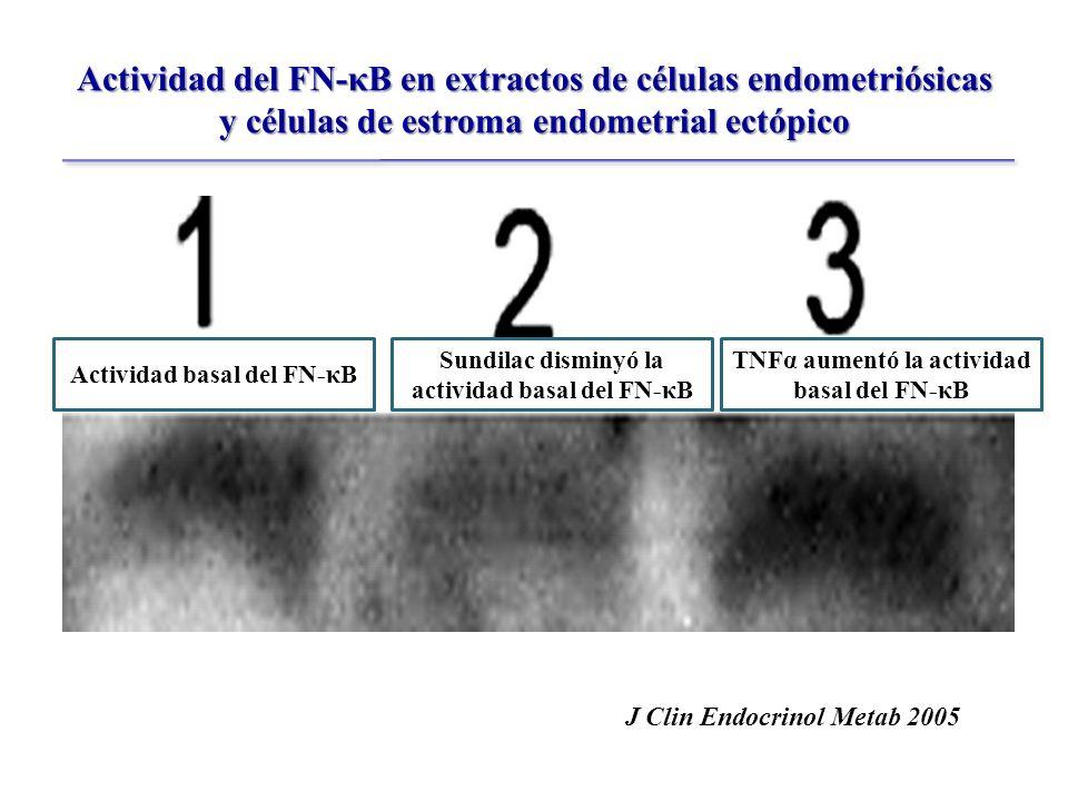 Actividad del FN-κB en extractos de células endometriósicas y células de estroma endometrial ectópico Actividad basal del FN-κB Sundilac disminyó la actividad basal del FN-κB TNFα aumentó la actividad basal del FN-κB J Clin Endocrinol Metab 2005
