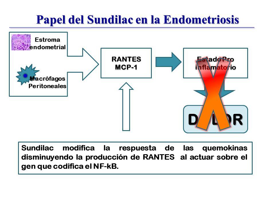 Papel del Sundilac en la Endometriosis D D DD D RANTESMCP-1 Estado Pro inflamatorio Sundilac modifica la respuesta de las quemokinas disminuyendo la producción de RANTES al actuar sobre el gen que codifica el NF-kB.