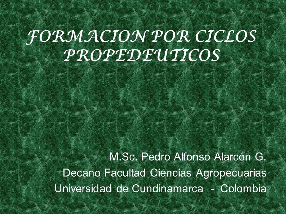FORMACION POR CICLOS PROPEDEUTICOS M.Sc.Pedro Alfonso Alarcón G.