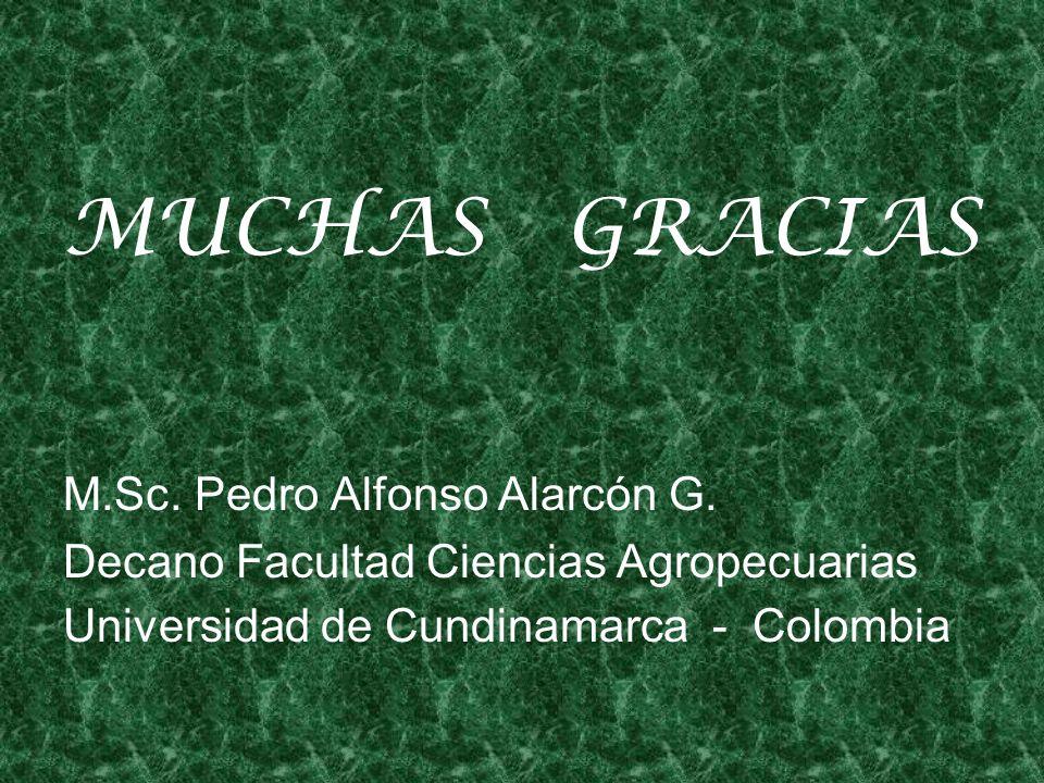 MUCHAS GRACIAS M.Sc.Pedro Alfonso Alarcón G.