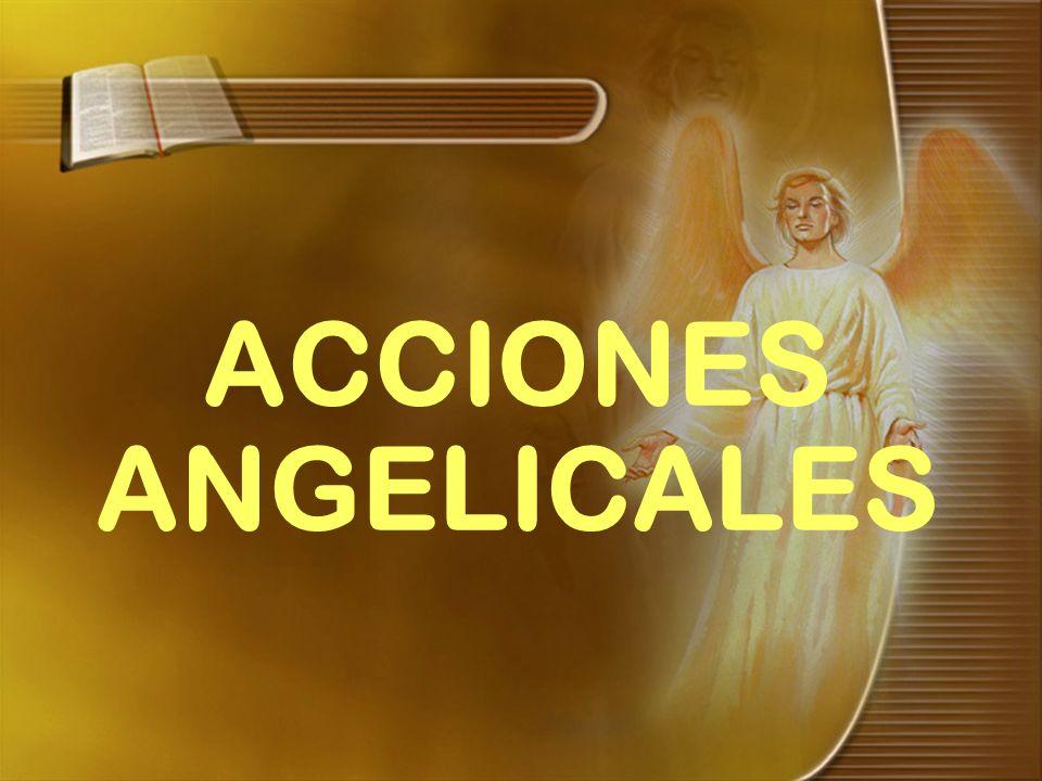ACCIONES ANGELICALES
