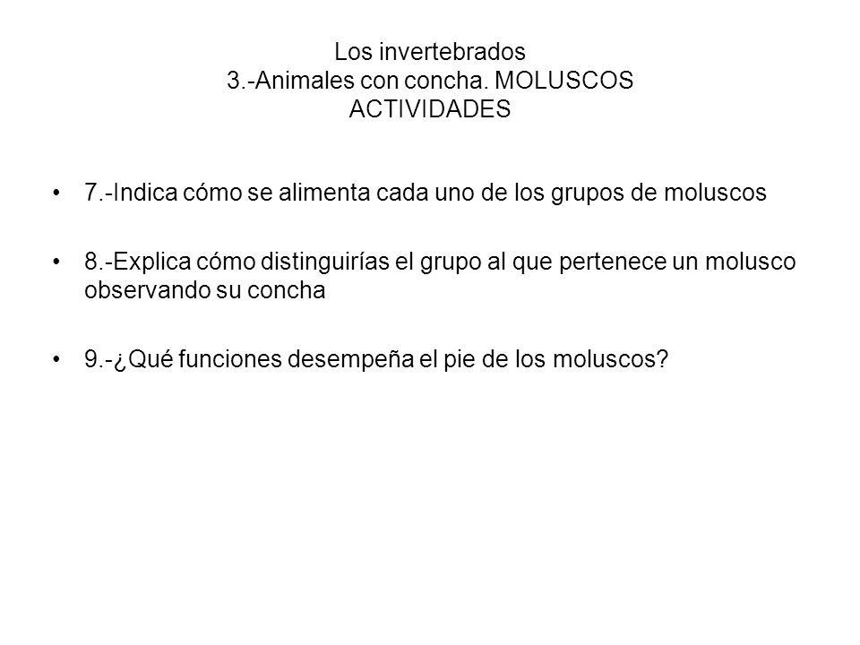 Los invertebrados 3.-Animales con concha. MOLUSCOS ACTIVIDADES 7.-Indica cómo se alimenta cada uno de los grupos de moluscos 8.-Explica cómo distingui