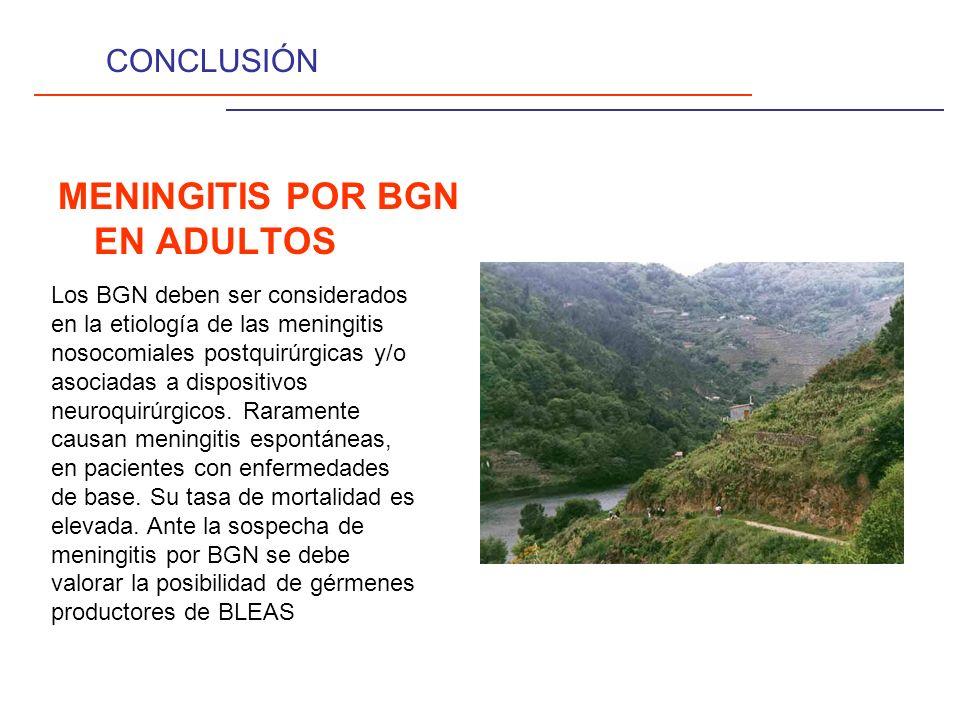 CONCLUSIÓN MENINGITIS POR BGN EN ADULTOS Los BGN deben ser considerados en la etiología de las meningitis nosocomiales postquirúrgicas y/o asociadas a