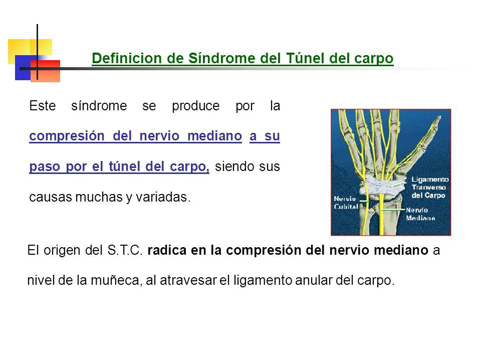 Fisiopatología de la compresión del nervio mediano Durante la contracción el nervio queda aprisionado entre el ligamento sobre el cuál se acoda, y los