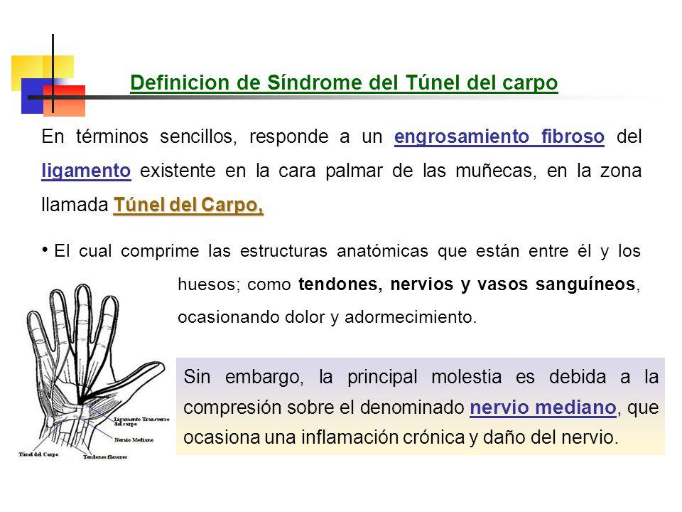 Este síndrome se produce por la compresión del nervio mediano a su paso por el túnel del carpo, siendo sus causas muchas y variadas. Definicion de Sín