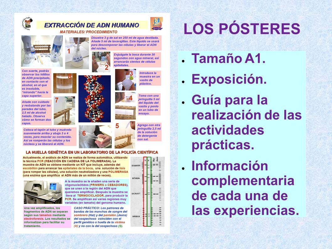 LOS PÓSTERES Tamaño A1. Exposición. Guía para la realización de las actividades prácticas. Información complementaria de cada una de las experiencias.
