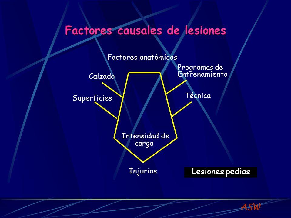 FACTORES PREDISPONENTES Factores biomecánicos y antropométricos DME Factores extrínsecos e intrínsecos : Factores extrínsecos : equipamiento - ambiente Pueden predisponer a lesión o injuria.