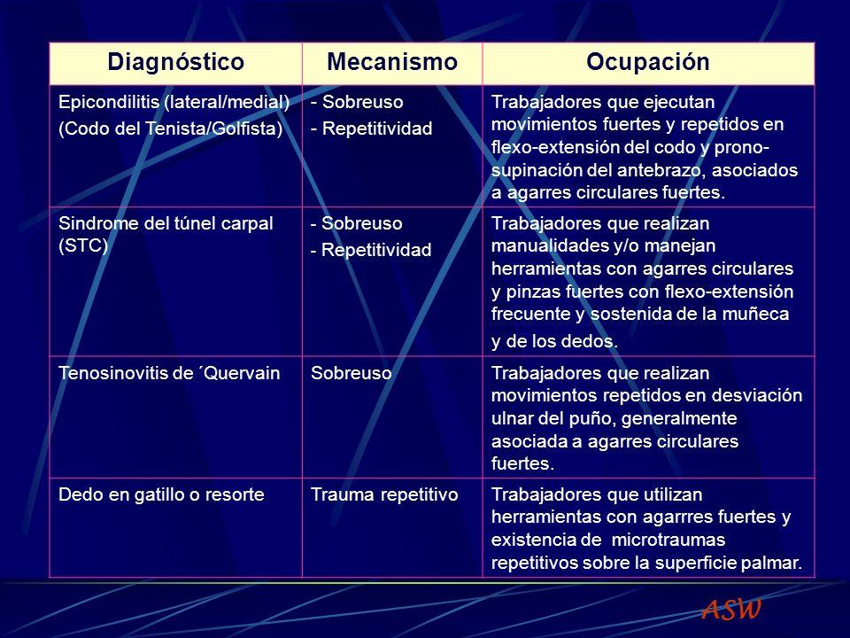Rettig.Clinic Sports Med 20(3).
