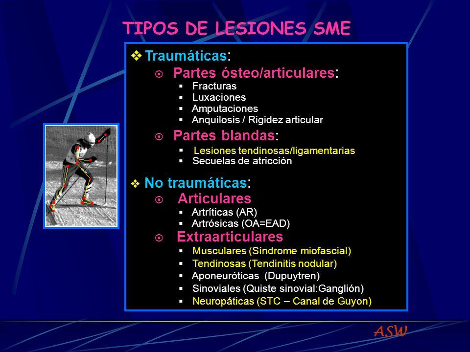 TIPOS DE LESIONES SME ASW Traumáticas : Partes ósteo/articulares : Fracturas Luxaciones Amputaciones Anquilosis / Rigidez articular Partes blandas: Lesiones tendinosas/ligamentarias Secuelas de atricción No traumáticas : Articulares Artríticas (AR) Artrósicas (OA=EAD) Extraarticulares Musculares (Síndrome miofascial) Tendinosas (Tendinitis nodular) Aponeuróticas (Dupuytren) Sinoviales (Quiste sinovial:Ganglión) Neuropáticas (STC – Canal de Guyon)