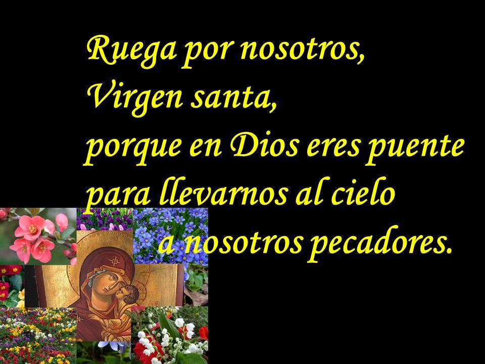. Ruega por nosotros, Virgen santa, porque de Dios luz eres radiante en Cristo Muerto y Resucitado.