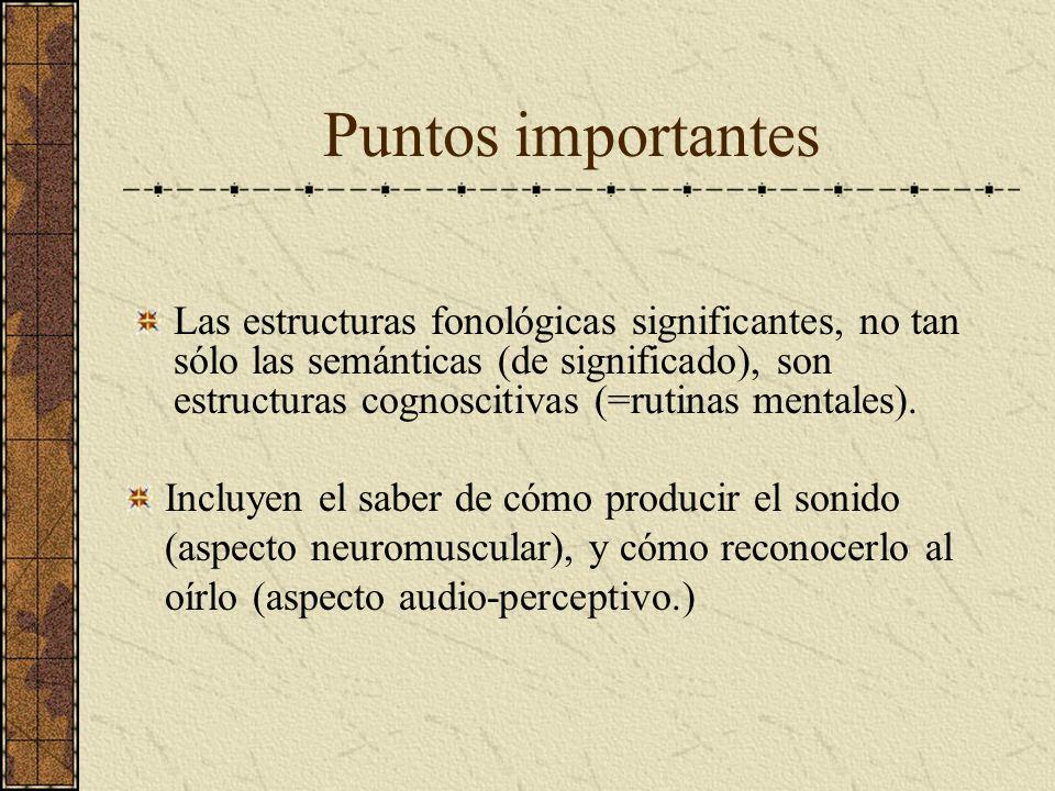 Puntos importantes Incluyen el saber de cómo producir el sonido (aspecto neuromuscular), y cómo reconocerlo al oírlo (aspecto audio-perceptivo.) Las e