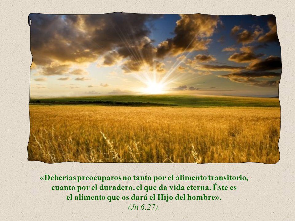 «Deberíais preocuparos no tanto por el alimento transitorio, cuanto por el duradero, el que da vida eterna.