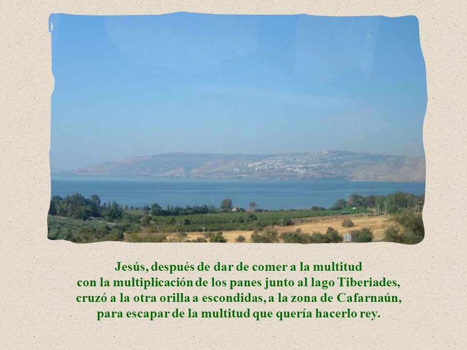 Jesús, después de dar de comer a la multitud con la multiplicación de los panes junto al lago Tiberiades, cruzó a la otra orilla a escondidas, a la zona de Cafarnaún, para escapar de la multitud que quería hacerlo rey.