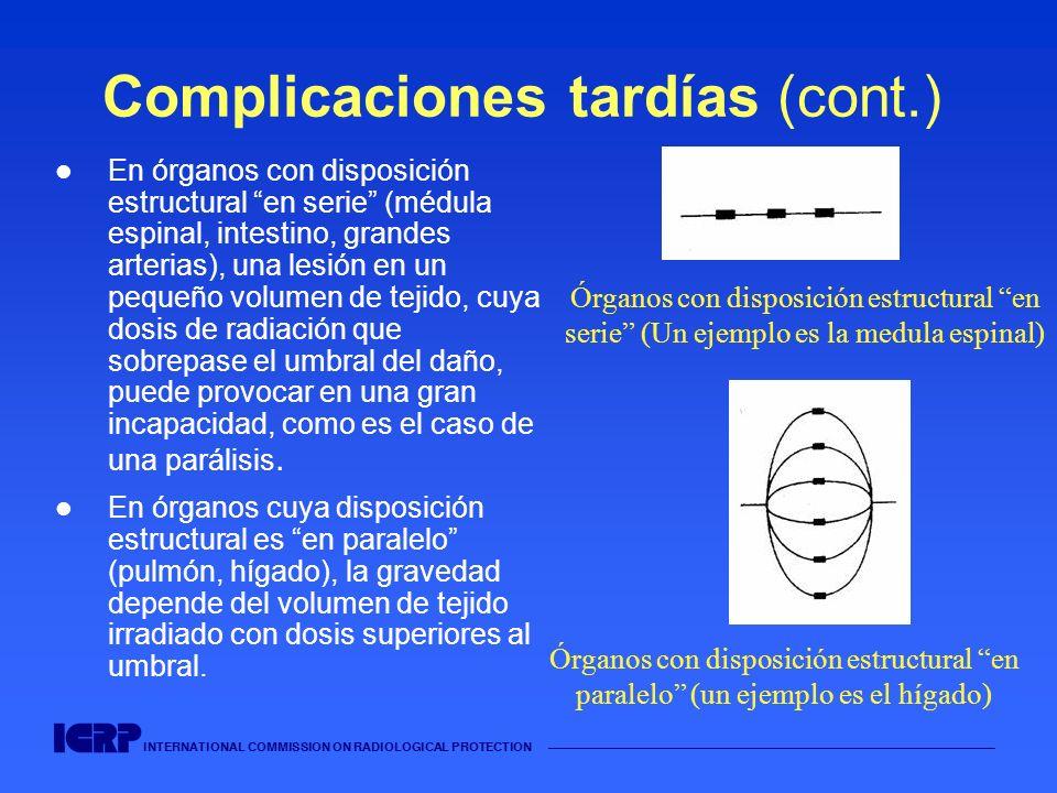 INTERNATIONAL COMMISSION ON RADIOLOGICAL PROTECTION Complicaciones tardías (cont.) En órganos con disposición estructural en serie (médula espinal, in