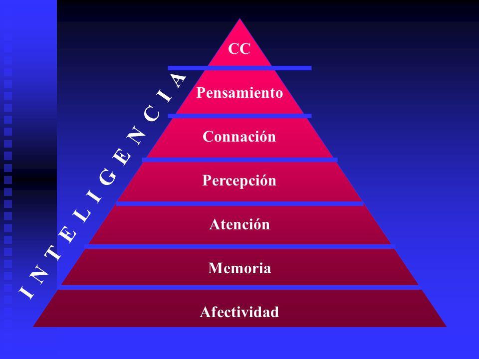 Afectividad Memoria Atención Percepción Connación Pensamiento CC I N T E L I G E N C I A