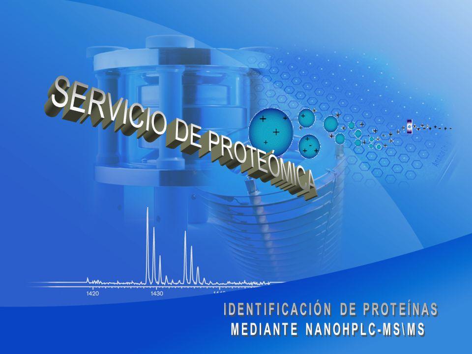 La espectrometría de masas permite la identificación de proteínas a través de la interpretación de los espectros de fragmentación de péptidos generados a partir de proteólisis (normalmente con tripsina) de proteínas.