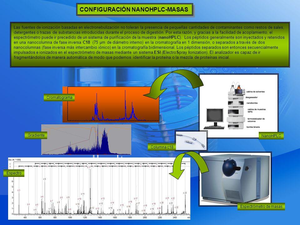 CONFIGURACIÓN NANOHPLC-MASAS Las fuentes de ionización basadas en electronebulización no toleran la presencia de pequeñas cantidades de contaminantes como restos de sales, detergentes o trazas de substancias introducidas durante el proceso de digestión.