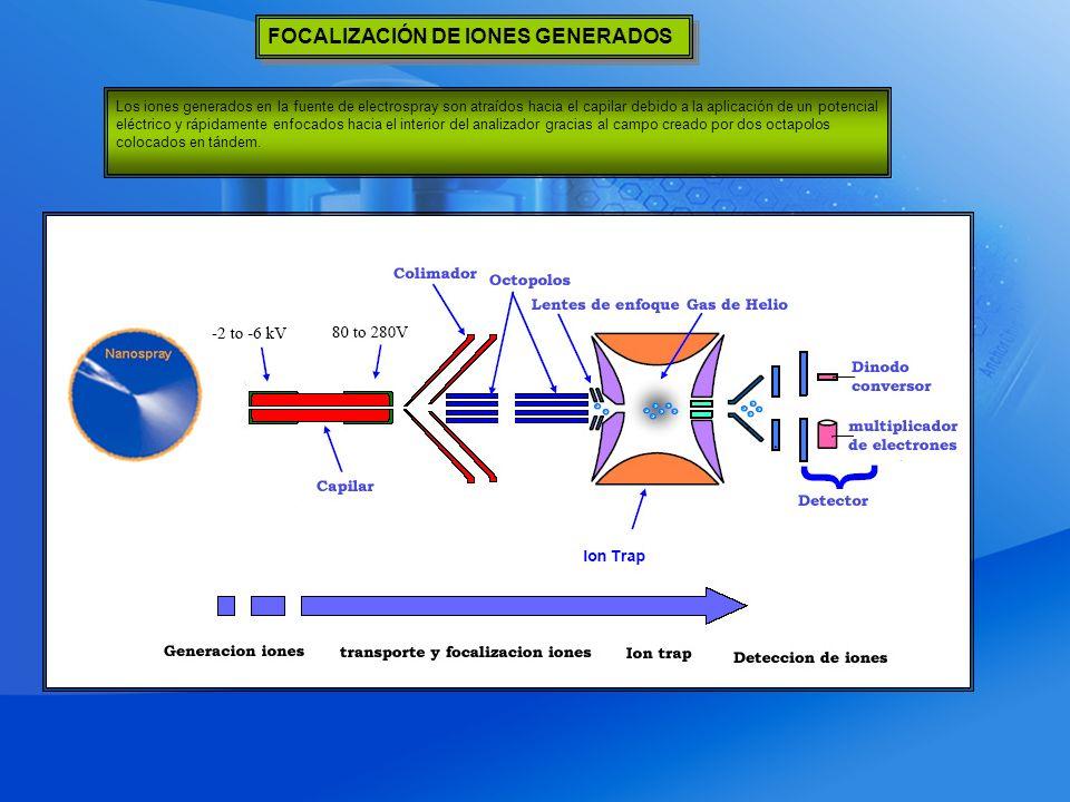 Los iones generados en la fuente de electrospray son atraídos hacia el capilar debido a la aplicación de un potencial eléctrico y rápidamente enfocados hacia el interior del analizador gracias al campo creado por dos octapolos colocados en tándem.