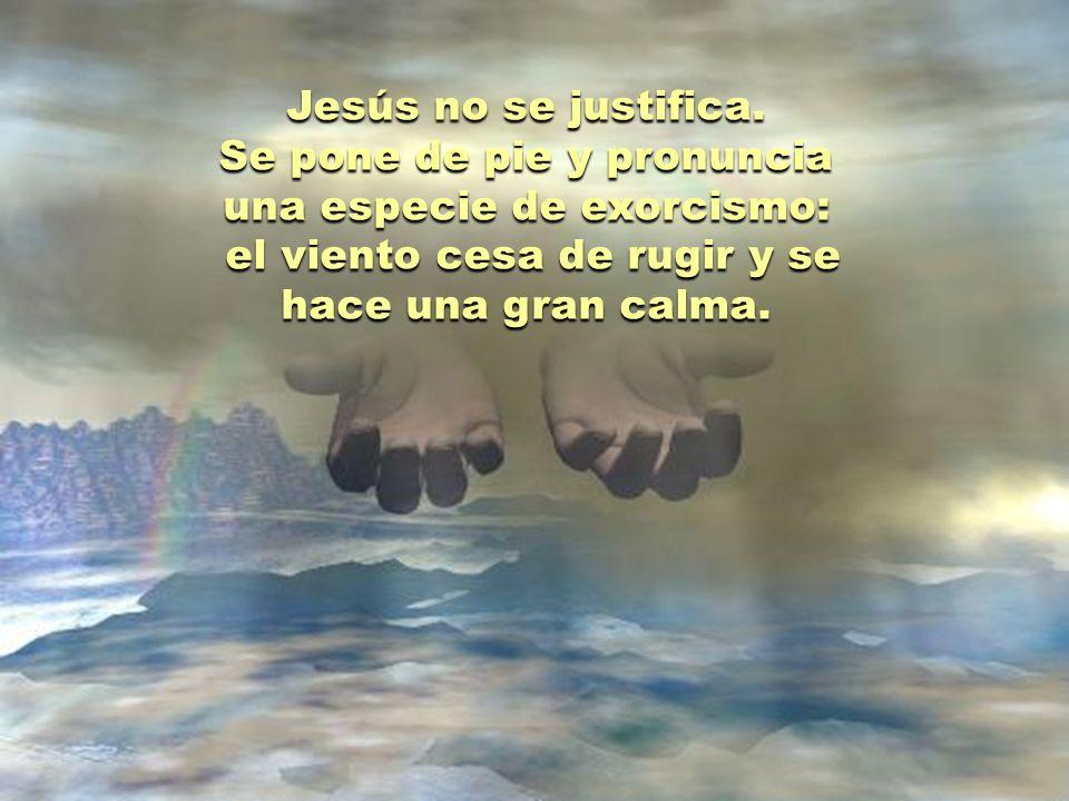Aterrorizados, los discípulos despiertan a Jesús. No captan la confianza de Jesús en el Padre. Lo único que ven en él es una increíble falta de interé